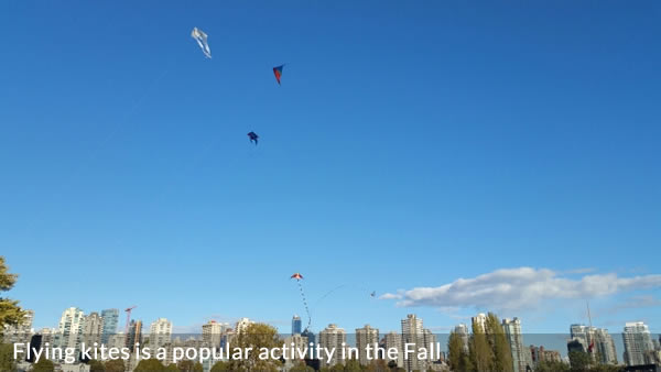 Kites flying in Vanier Park Vancouver